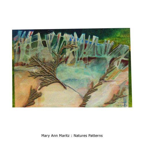 Mary Ann Maritz : Natures Patterns